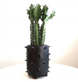 planter2-1.jpg