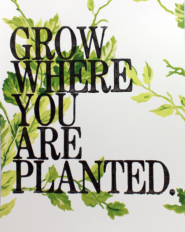 Amy Rice Grow Where You Are Planted